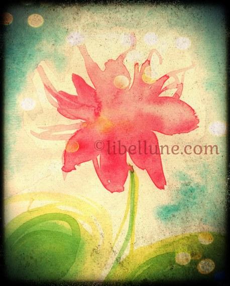 fleur-profils