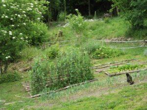 jardin-spirituel